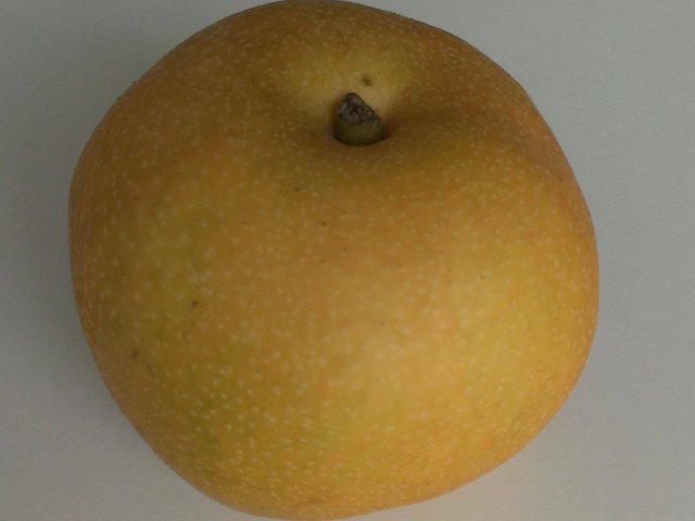 秋の薬膳と梨