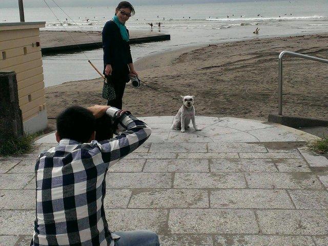 撮影@kamakura