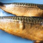 発酵スモーク鯖